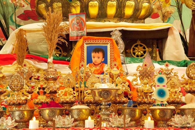 Khenchen Yangsi Rinpoche Photo